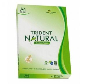 Trident My Choice Paper A4, 70 GSM