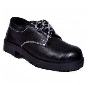 Alfa Gold AG 02 Steel Toe Safety Shoes, Size: 6