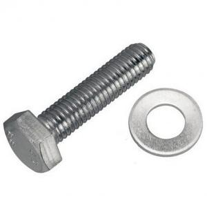 Stainless Steel 8mm Bolt With 2.5 Inch Washer