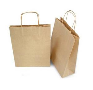 Paper Carry Bag 15x12 Inch