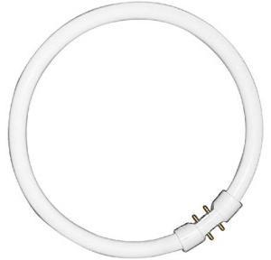 Philips TL5 Circular CFL, 40W/865