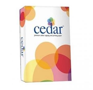 JK Cedar A3 Copier Paper, 100 GSM, 500 Sheets