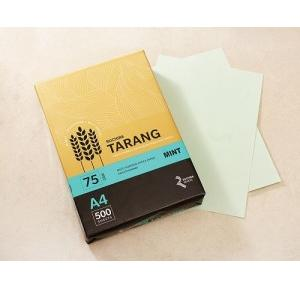 Ruchira Tarang A4 Colored Copier Paper, 75 GSM, 500 Sheets (Mint)