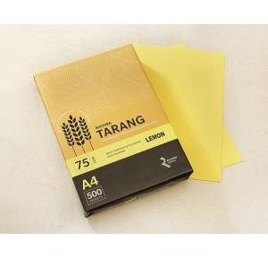 Ruchira Tarang A4 Colored Copier Paper, 75 GSM, 500 Sheets (Lemon)