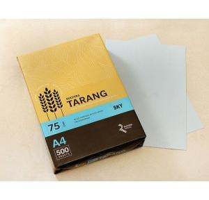 Ruchira Tarang A4 Colored Copier Paper, 75 GSM, 500 Sheets (Sky)