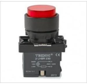 Teknic White Illuminated Momentary Actuator With Filament Bulb, P2ALRP1