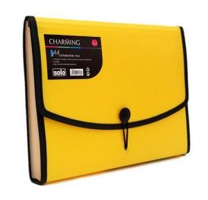 Solo EX802 Expanding File (Elastic With Swing) - 12 Section, Size: A4