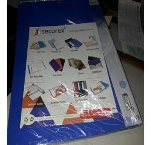 Securex Clear Display Book A4, 30 Pockets