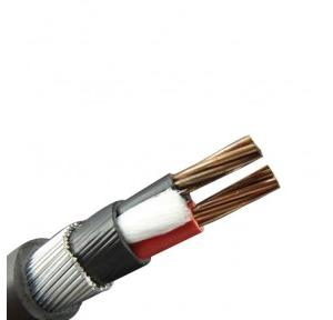 Polycab 1.5 sqmm 2 Core Armoured Copper Cable