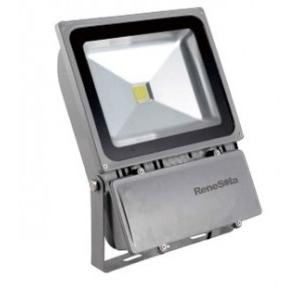 Renesola LED Flood Light 100W