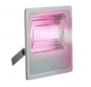 D'Mak Aluminium Diecast IP67 LED Flood Light, 100 Watt