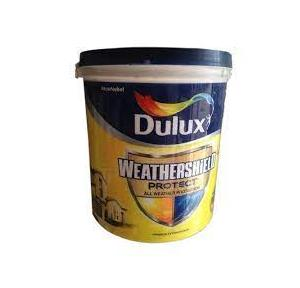 Dulux Weathershield Protect Paint RAL 901, White