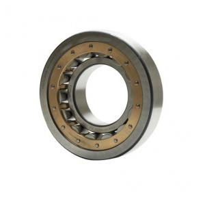 NBC Single Row Cylindrical Roller Bearings, 30X58X17