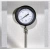H Guru Vertical Shape Temperature Gauge
